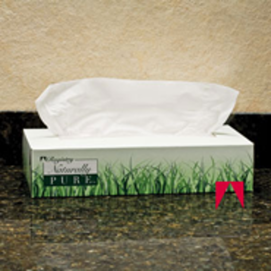 Picture of Naturally Pure, Facial Tissue, White - GP