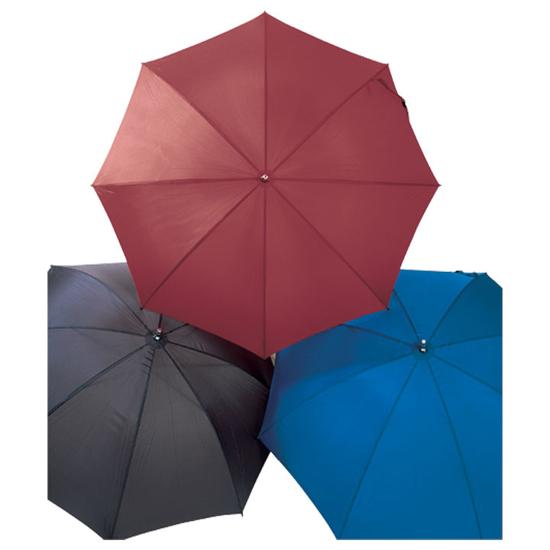 Picture of Coachman's Umbrellas