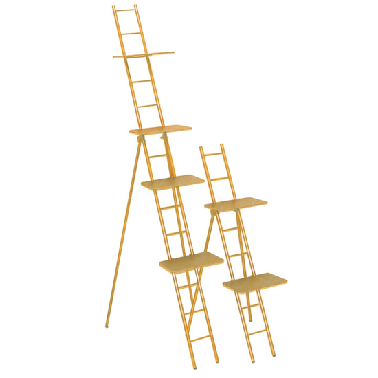 Picture of Ladder Racks