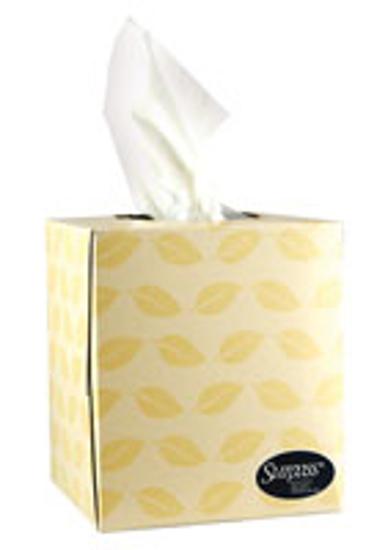 Picture of Surpass, Facial Tissues, Boutique, Cube Box - GP