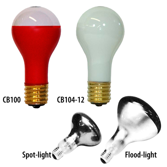Picture of Specialty Light Bulbs
